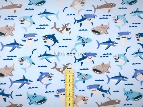 BABAY SHARK